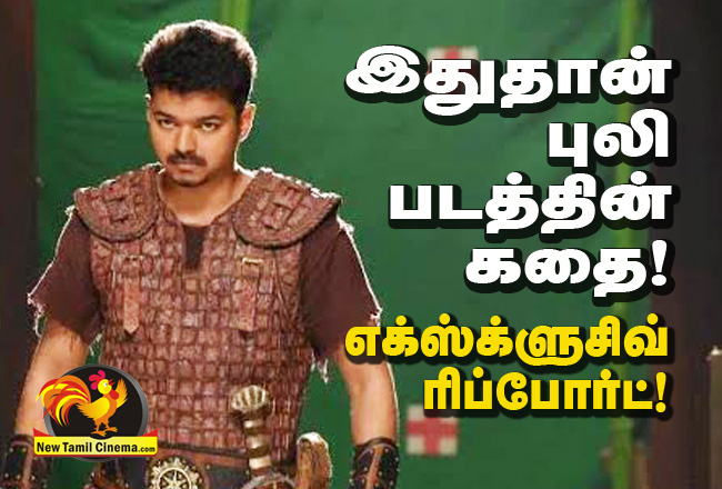puli-story-exclusive