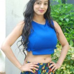 137420089Vaibhavi-Latest-Photos-At-Tiger-Sultan-Teaser-Launch-19
