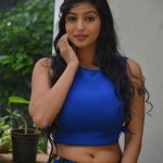 1572697228Vaibhavi-Latest-Photos-At-Tiger-Sultan-Teaser-Launch-2
