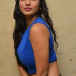 1663884291Vaibhavi-Latest-Photos-At-Tiger-Sultan-Teaser-Launch-16
