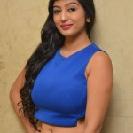 2119506074Vaibhavi-Latest-Photos-At-Tiger-Sultan-Teaser-Launch-24