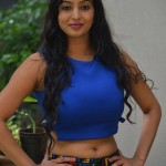 41240306Vaibhavi-Latest-Photos-At-Tiger-Sultan-Teaser-Launch-1