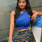 772110981Vaibhavi-Latest-Photos-At-Tiger-Sultan-Teaser-Launch-11