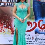 Actress Nikisha Patele Hot Stills02