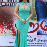 Actress Nikisha Patele Hot Stills03