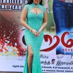 Actress Nikisha Patele Hot Stills04