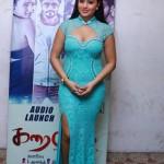 Actress Nikisha Patele Hot Stills10