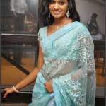 Anjana Saree Photo Stills-actressephoto (10)