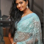 Anjana Saree Photo Stills-actressephoto (6)