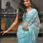 Anjana Saree Photo Stills-actressephoto (9)