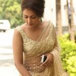 madhu-shalini-sizzles-in-saree-photos_1_1