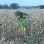 indra-kobai-movie-stills-058-copy