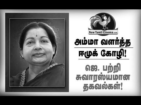 Interesting Facts About Jayalalitha.