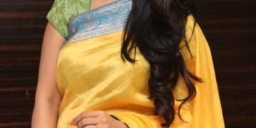 Maragadha Naanayam Audio LaunchStills 012